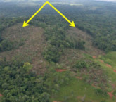 Industrias Infinito pide $321 millones a Costa Rica por fallida mina en Crucitas