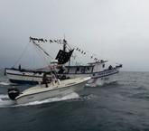 Insisten en daño ambiental que provocan barcos camaroneros de arrastre