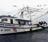 Diputados presionan por otro proyecto de pesca de arrastre