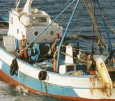 Gobierno no tira la toalla con cuestionado proyecto pesquero